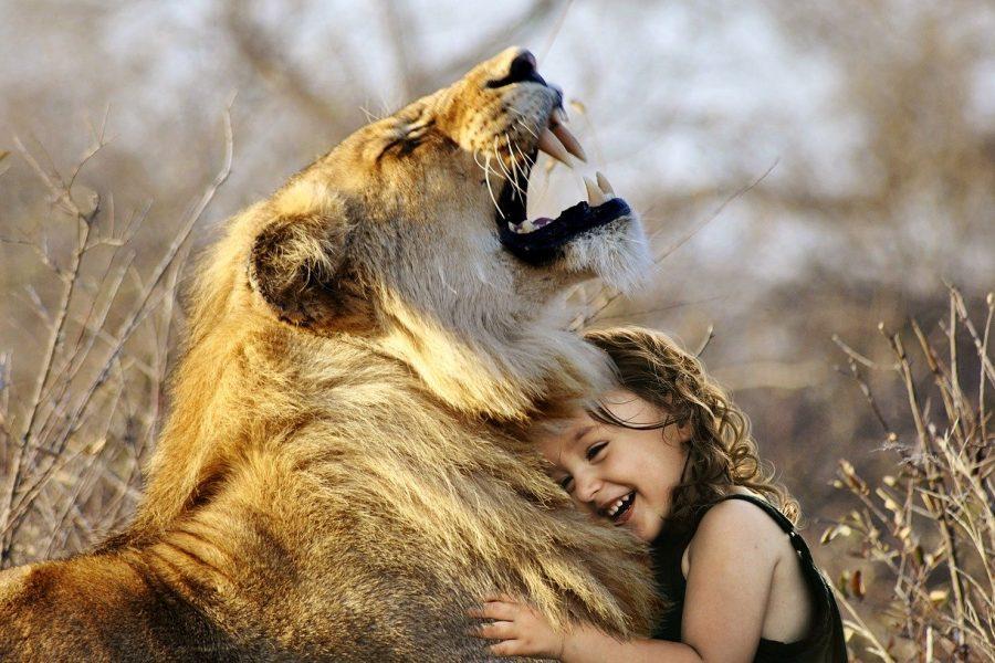 Abrazos sin peligro