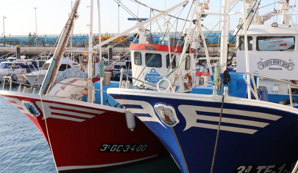 Barcos de pesca en puerto canario | CONSEJERÍA DE AGRICULTURA, GANADERÍA Y PESCA DEL GOBIERNO DE CANARIAS