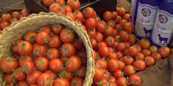 Tomate de Canarias   Foto: Consejería de Agricultura del Gobierno canario